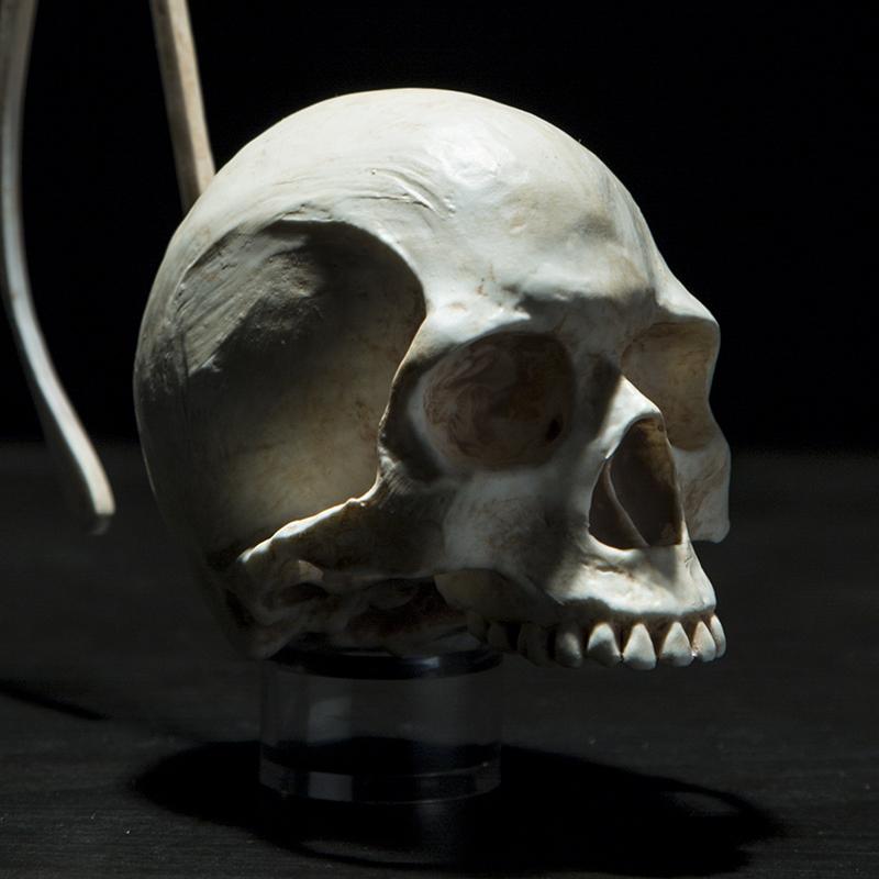 Suicide Note Sculpture