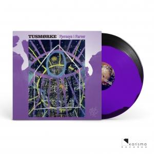 """Fjernsyn i farver (Special Limited Rejected 12"""" Vinyl)"""