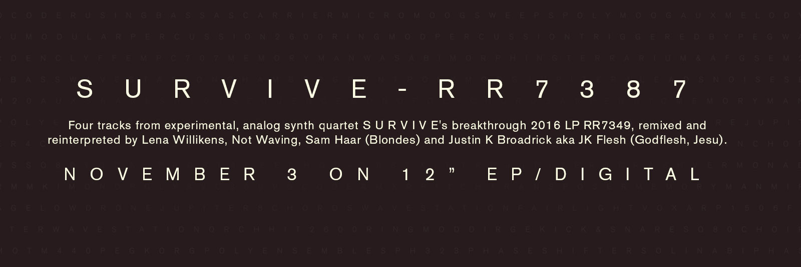 survive-remix-lp