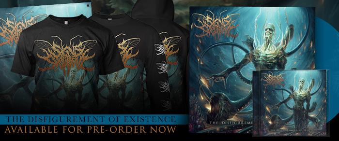 Signs of the Swarm - The Disfigurement of Existence