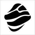 Miquido - Flutter App Development Company