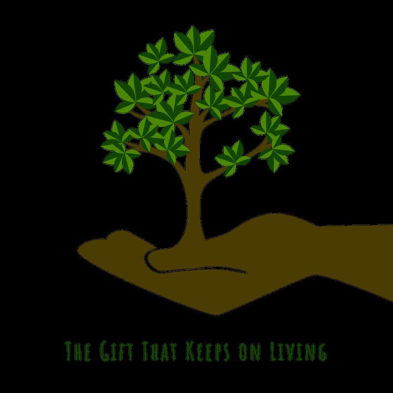 Adopt a tree %285%29