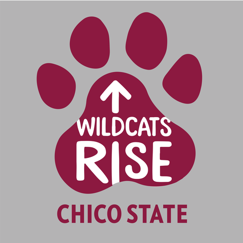 Wildcats rise gray1200