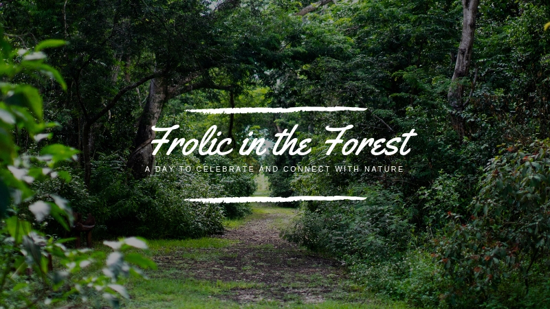 Frolic in the forest