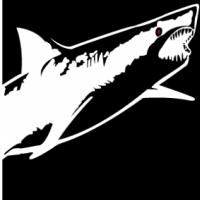 Sharkfest logo