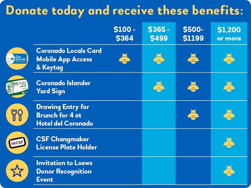 2019 20 donor benefits chart