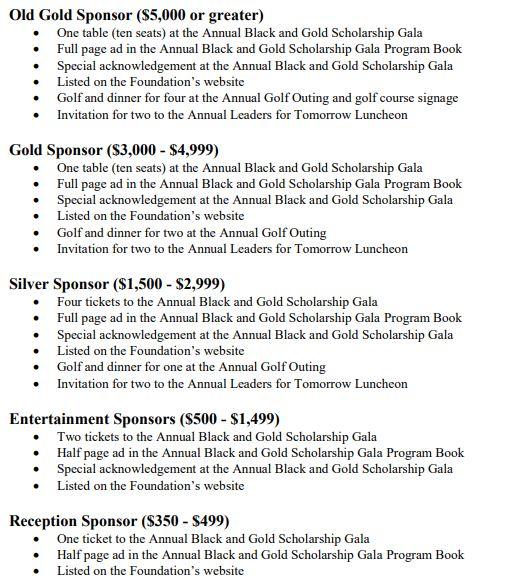 Tml sponsorship levels
