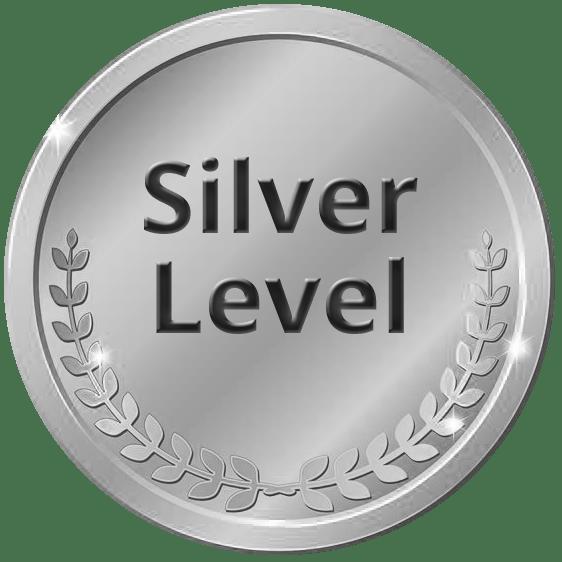 Silver level1