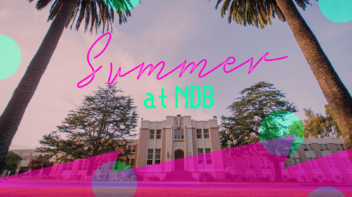 Header   summer at ndb 02