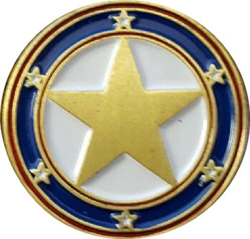 90 anniv pin cropped