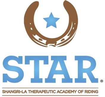 Star main logo   vertical
