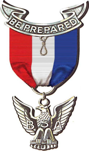 Eagle scout badge reduced size