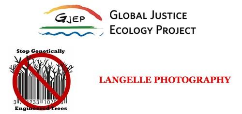 Gjep_logos_all