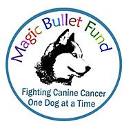 The Magic Bullet Fund Logo