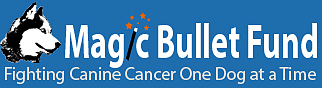 The Magic Bullet Fund Logo