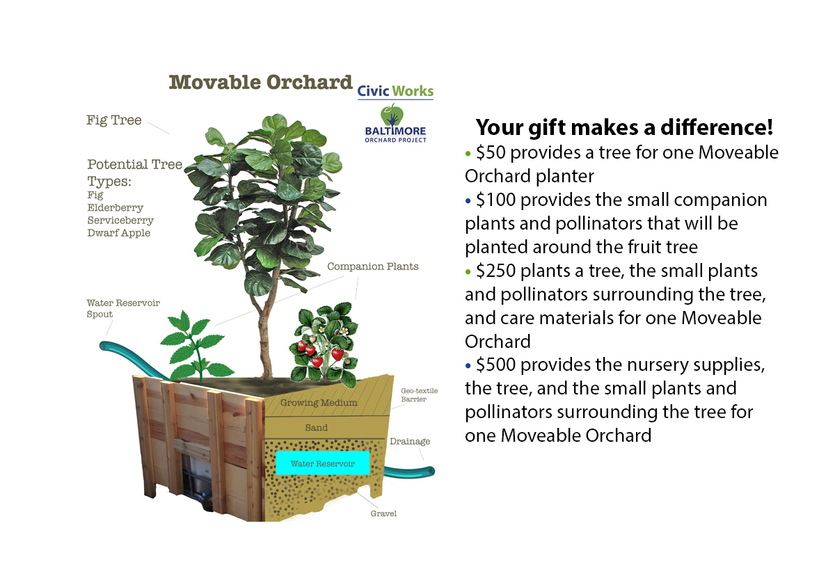 Movable orchard 3