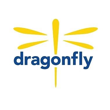 The Dragonfly Foundation Logo