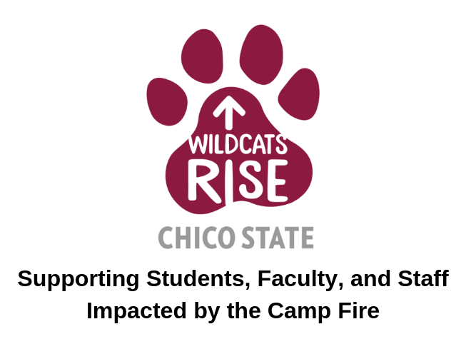 Wildcats rise logo