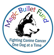 Magic Bullet Fund Inc. Logo