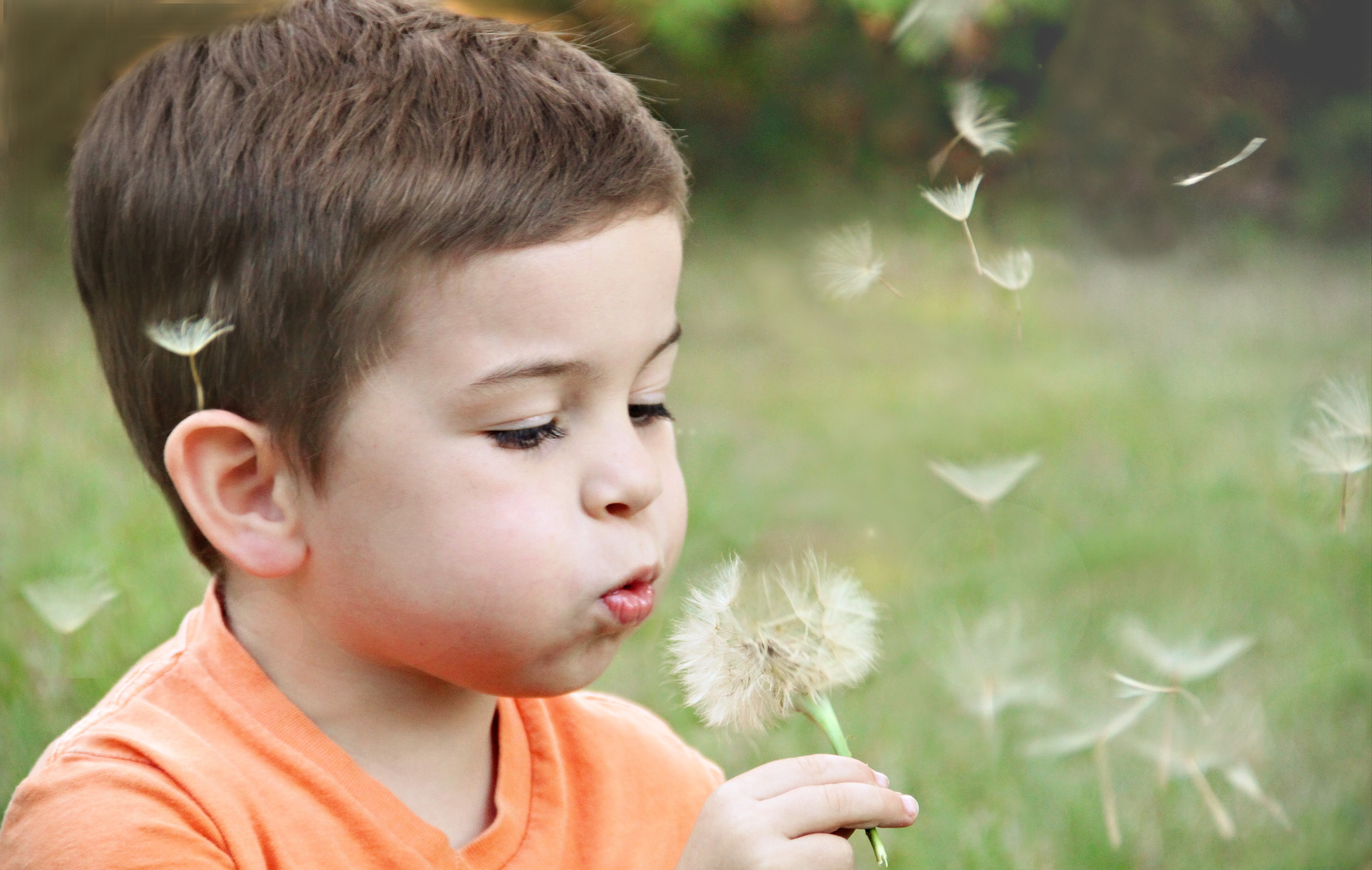 Blowing blurred background boy 1231215