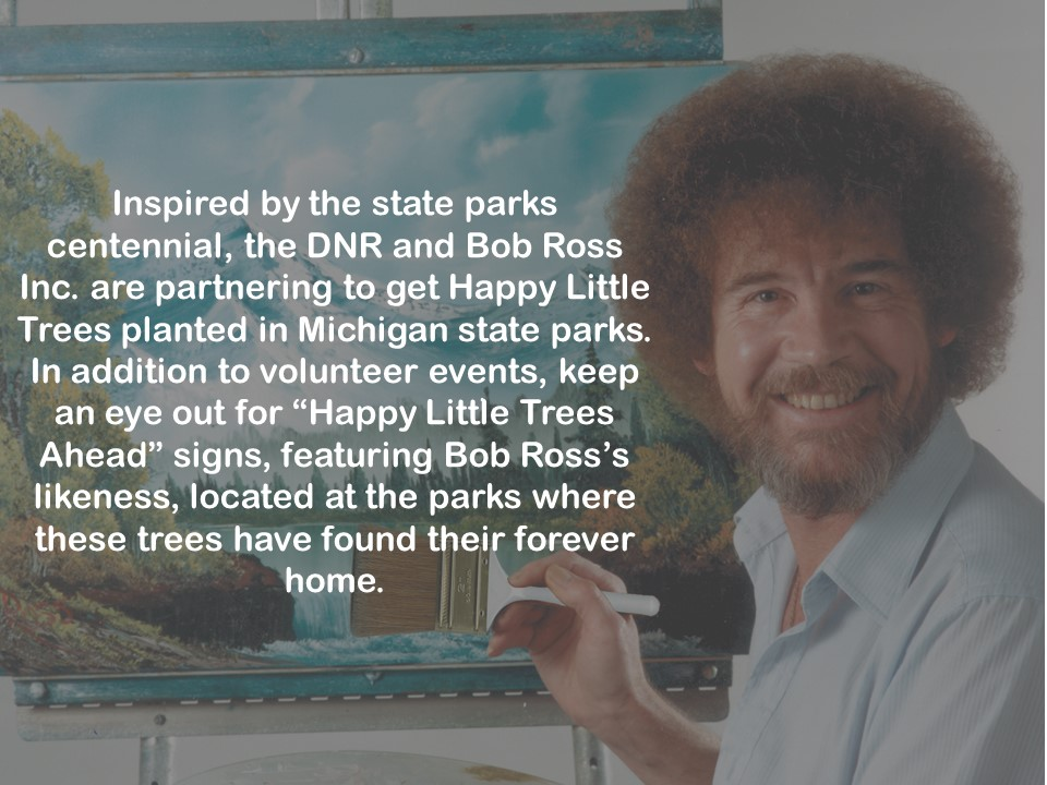 Bob ross partnership 5