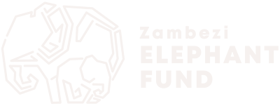 Zambezi Elephant Fund Logo