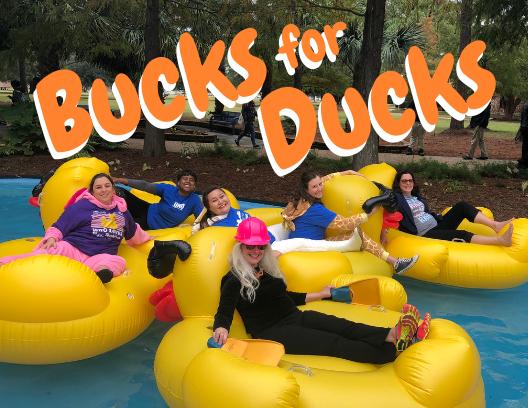 Bucks for ducks