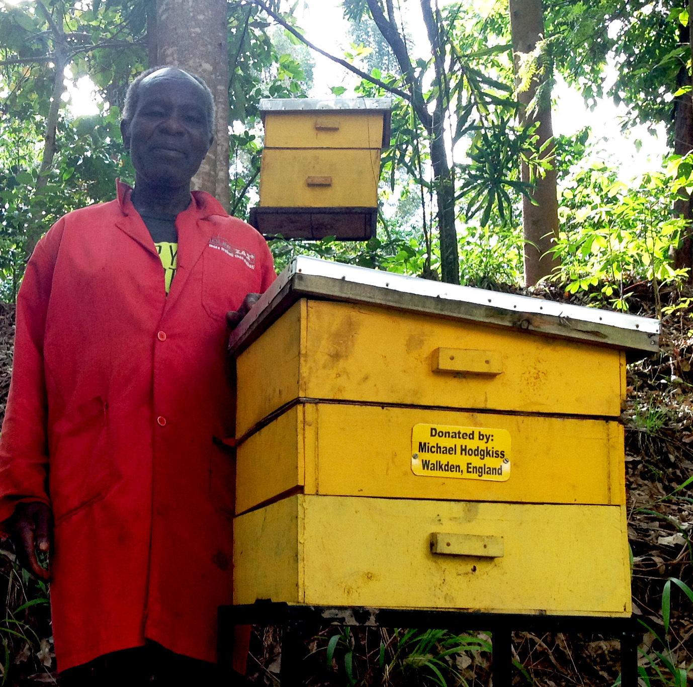 Beehive exposure changed 1