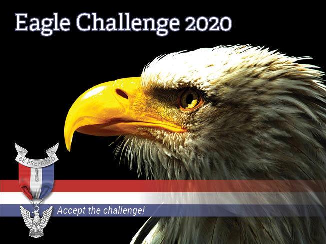 Mc eagle challenge 2020 mobilecause