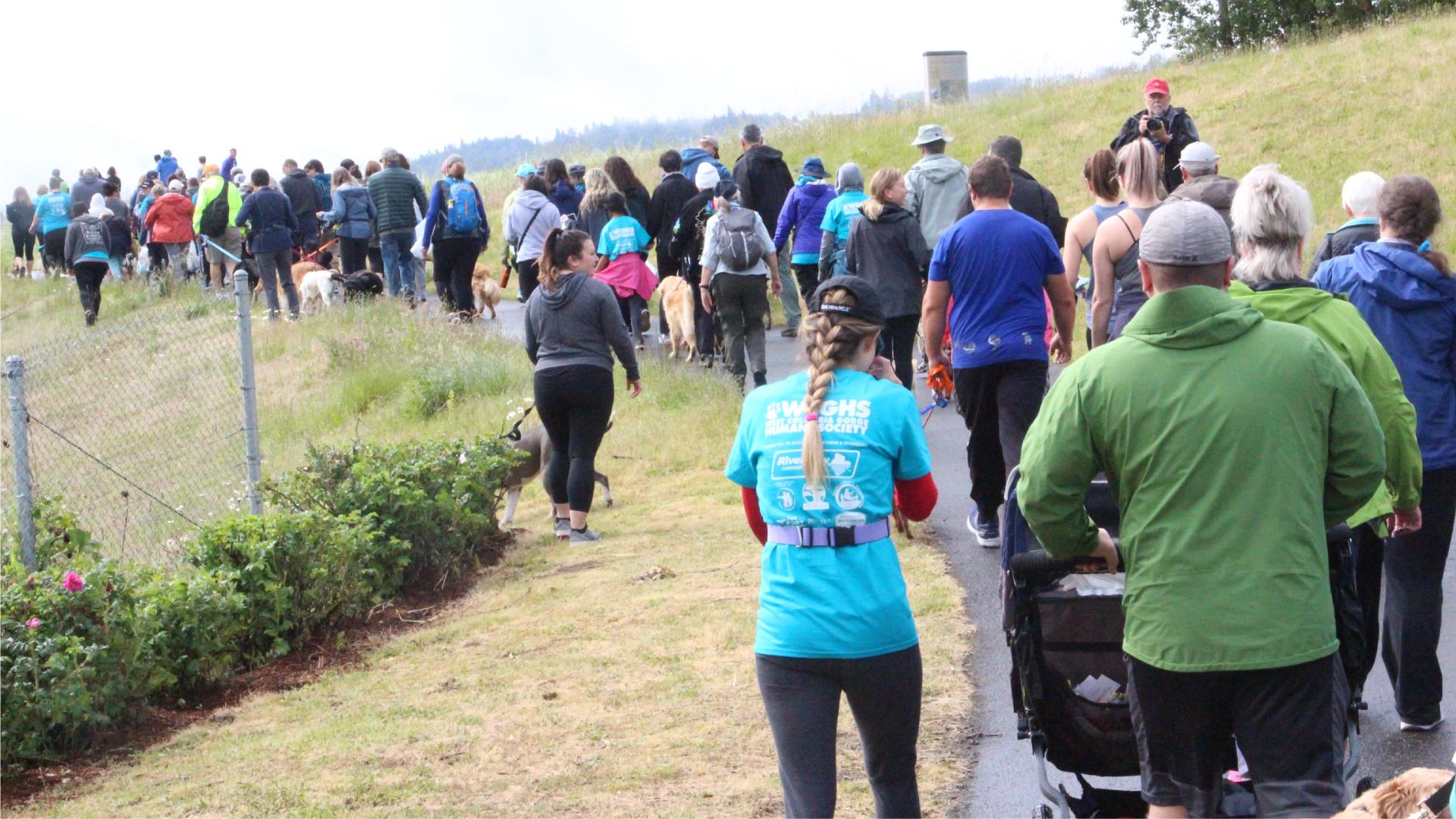 Crowd walking 2
