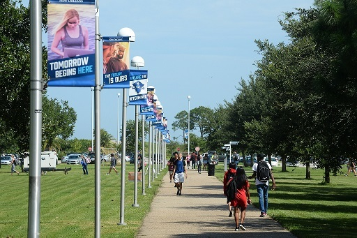 Campus walk way web