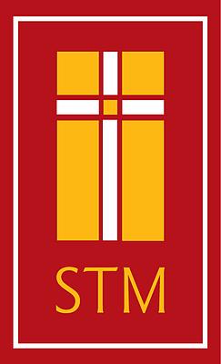 Stm logo color