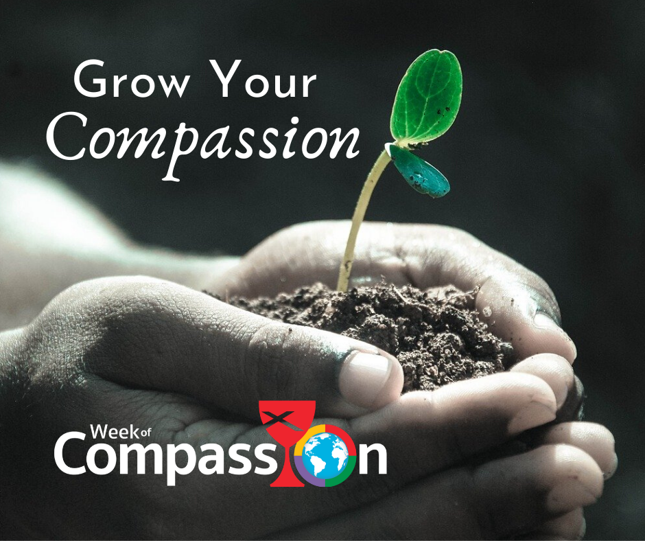 Grow your compassion  basic theme