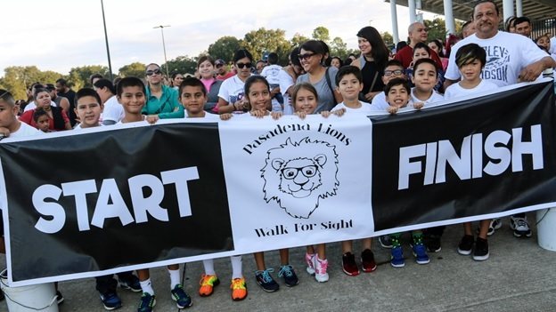 Walk for sight 2017