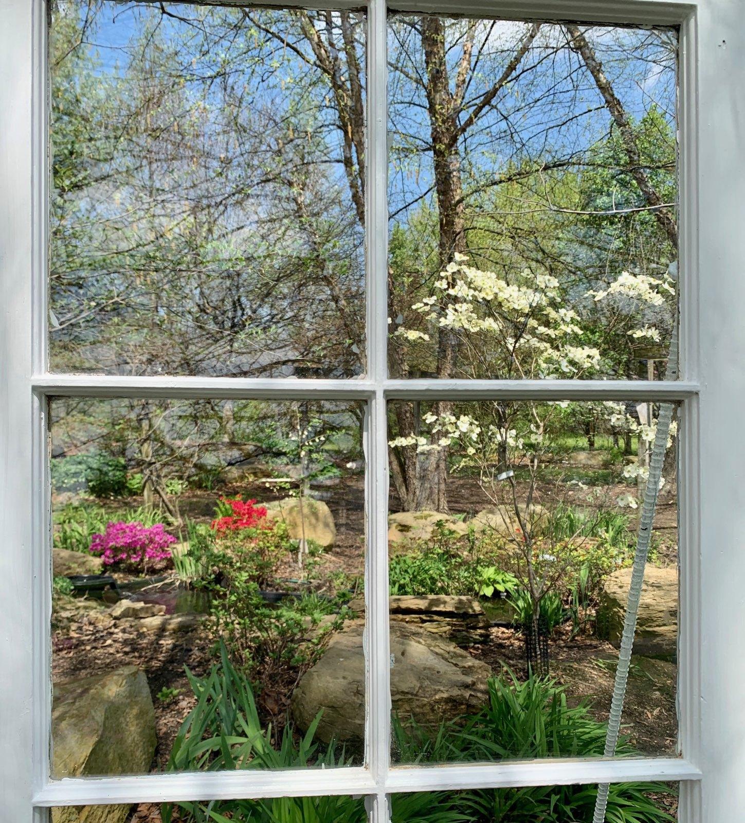 Photo op ericaceous garden