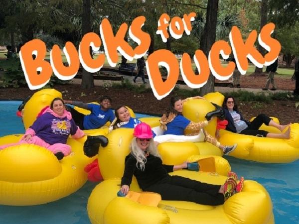 Bucks for ducks 600 x 450