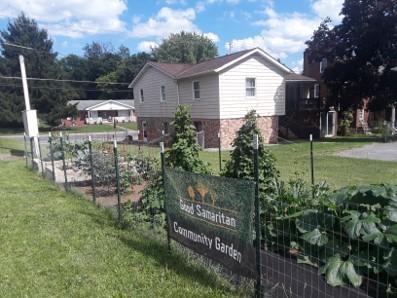 Community garden 2020