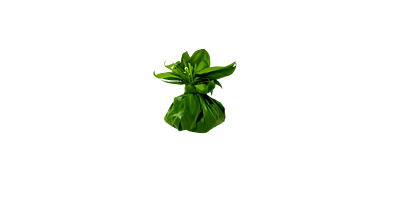 Visitor Industry Charity Walk Logo