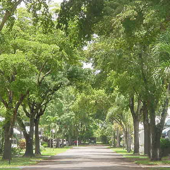 Mobile Home Park In Plantation Fl Sunshine City Mobile