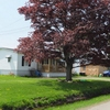 Mobile Home Park for Sale: Ripley MHP, Ripley, NY