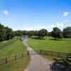 Mobile Home for Sale: Mobile Home - OXFORD, FL, Oxford, FL