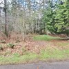 RV Lot for Rent: RV Lot for rent, Shelton, WA