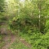 Mobile Home Lot for Sale: 0.65 acre Lot