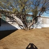Mobile Home for Sale: 5 Bedroom 2 bath home in an all age community in Sahurita! Lot 48, Sahuarita, AZ