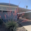 Mobile Home for Sale: Nice Updated Mobile home in Fountain East MHP for Sale! lot 225, Mesa, AZ
