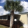 Mobile Home for Sale: 2015 Chio
