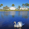 Mobile Home Park: Bay Indies, Venice, FL