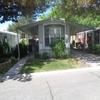 Mobile Home for Rent: 1988 Champion