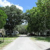 Mobile Home Park for Sale: 29-SPACE RV-MHP - 11.5% CAP RATE PURCHASE!, Zephyrhills, FL - Multi-Family, Zephyrhills, FL