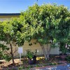 Mobile Home for Sale: ManufacturedInPark - Westminster, CA, Westminster, CA